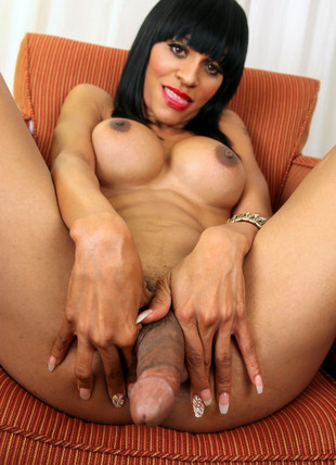 Big titted Tgirls com big black ereto..